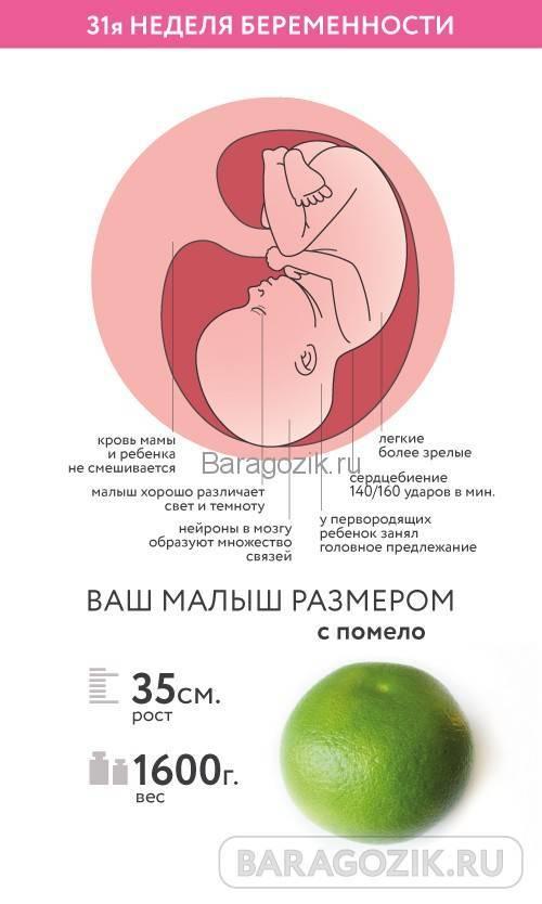 35 неделя беременности: что происходит с малышом и мамой, фото, развитие плода
