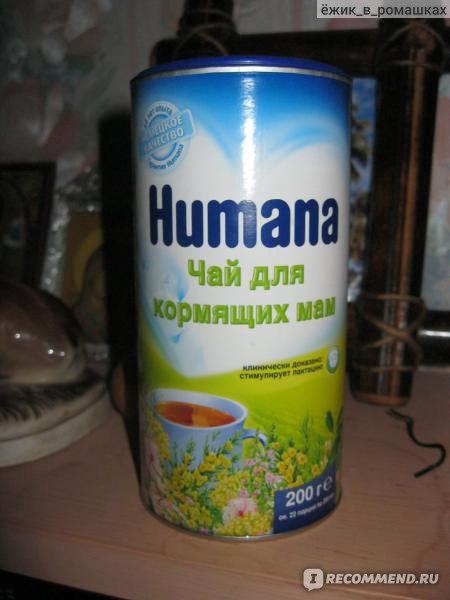 Чай для лактации: какой, когда и как можно его пить?
