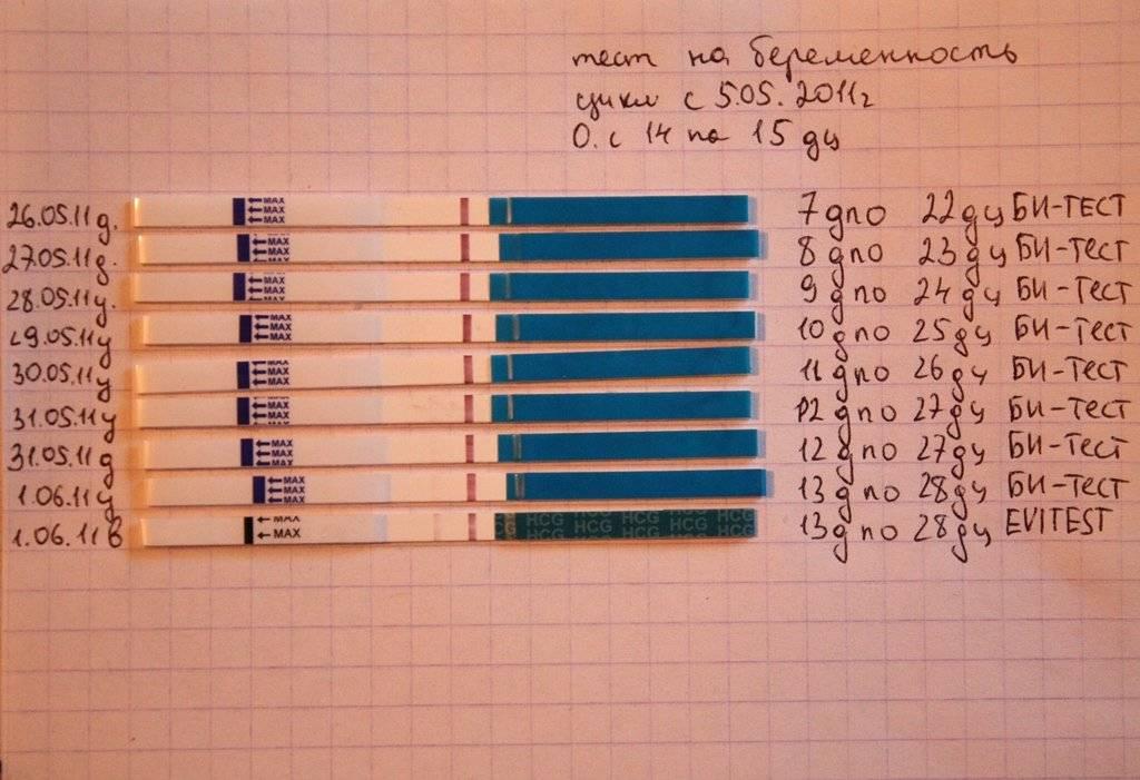Когда тест покажет беременность: на какой день задержки можно делать, когда результат будет самым точным, через сколько после зачатия, на каком сроке