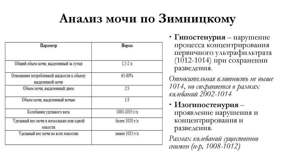 Анализ мочи по зимницкому. плотность (удельный вес) мочи. норма: