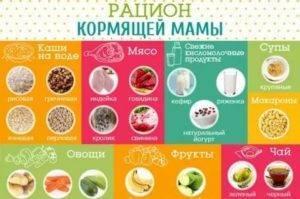 Можно ли кормящей маме хурму