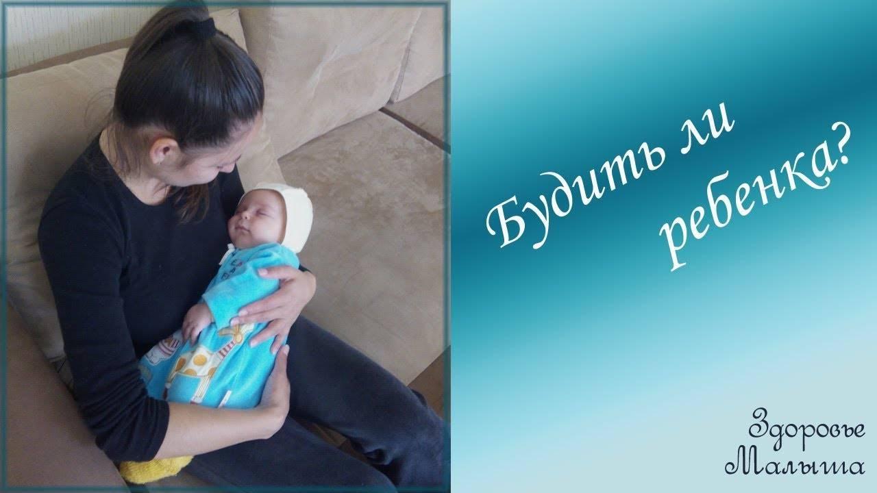 Надо ли будить ребёнка (новорожденного, грудничка) для кормления   nashy-detky.com.ua
