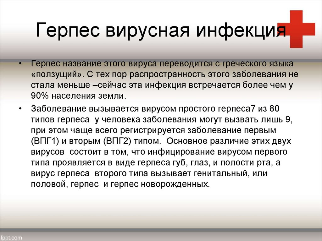 Герпес при беременности — чем лечить заболевание в 1, 2 и 3 триместрах, опасен ли вирус для ребенка? - wikidochelp.ru