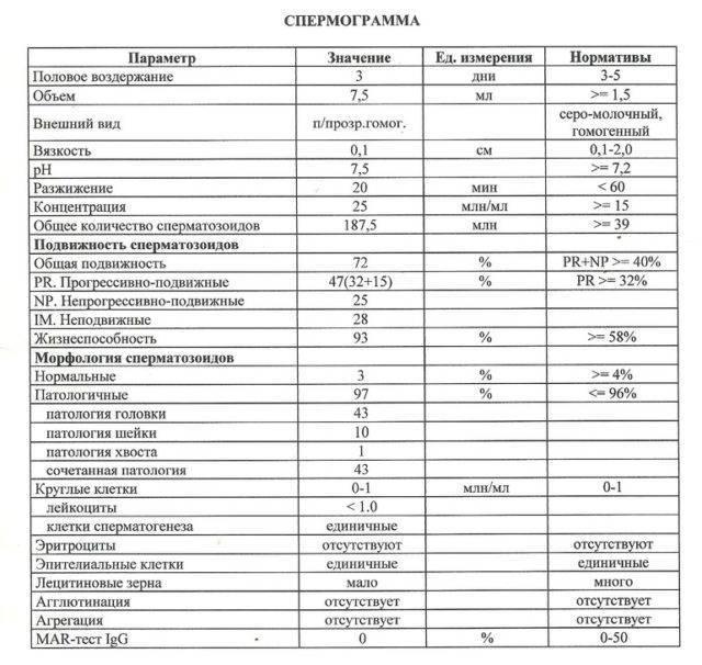 Нормальные результаты спермограммы - показатели нормы сперматазоидов у мужчин