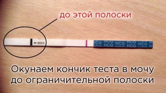 Как определить беременность до задержки