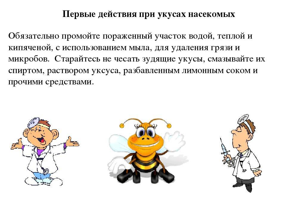 Аллергическая реакция на укусы насекомых