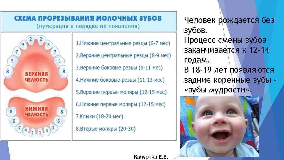 В каком возрасте режутся зубы у грудничков или могут ли резаться зубы в 3 месяца, признаки прорезывания у малышей • твоя семья - информационный семейный портал