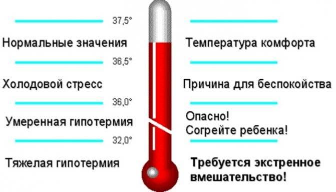 Температура 37 2 у грудничка