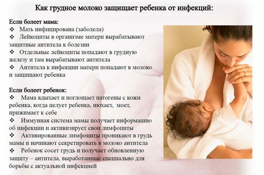 Какие продукты усиливают лактацию у кормящей мамы