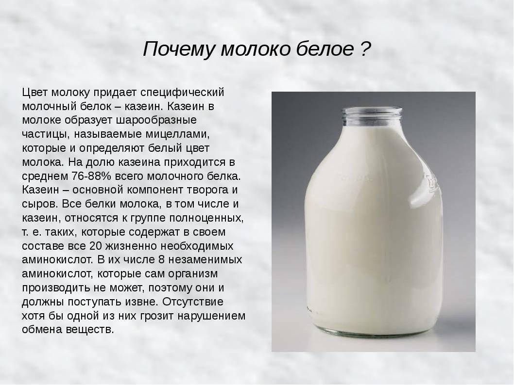 От какого продукта горчит грудное молоко