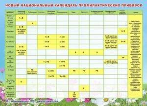 Индивидуальный календарь прививок для ребенка – как составить график