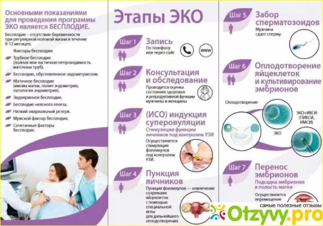 Анализы эко по омс: условия и сроки по квоте, рекомендации врачей, отзывы пациенток