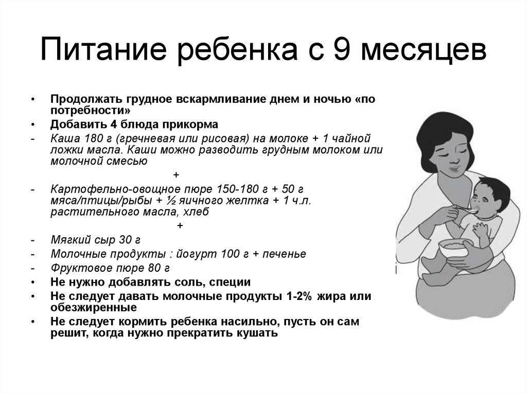 Важные аспекты рациона и меню питания ребёнка в 7 месяцев