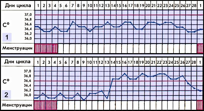 Овуляция после родов при гв - лактация (13 ответов врача!) - овуляция