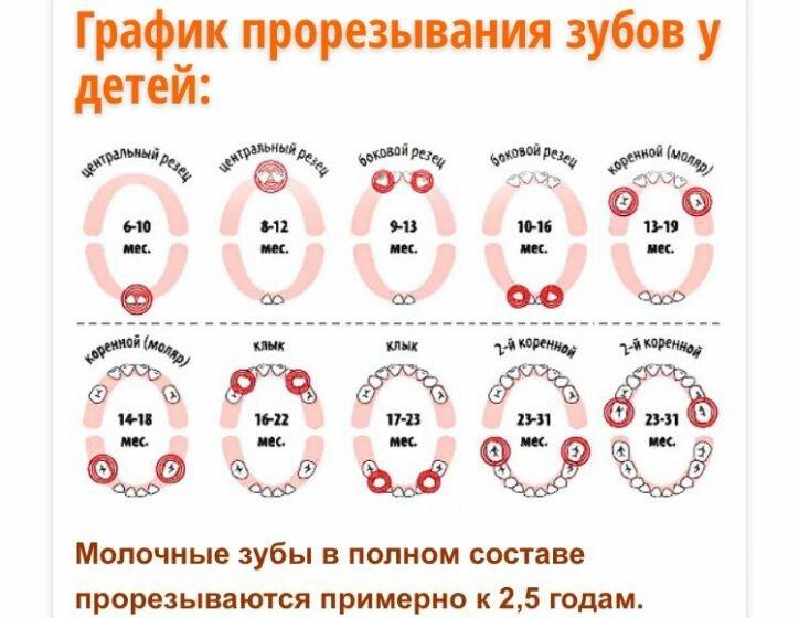 Температура при прорезывании зубов у грудничка: что нужно знать родителям | малыш здоров!