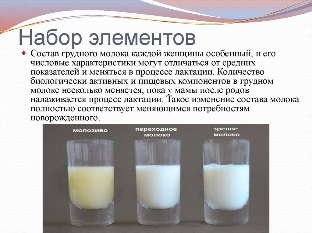 Продукты, повышающие лактацию грудного молока