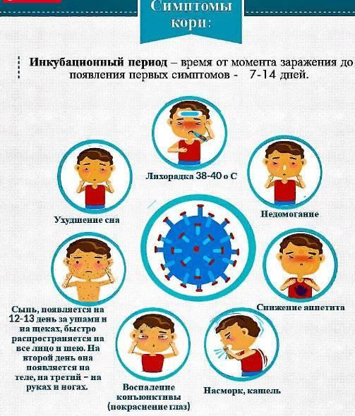 Краснуха у детей: причины, симптомы, лечение и профилактика