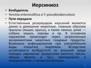 Иерсиниоз – у детей, симптомы, лечение, классификация, профилактика