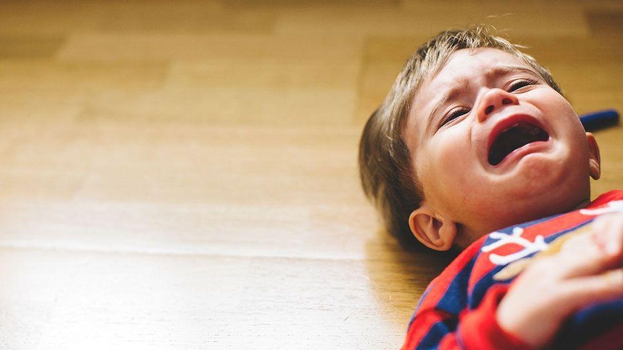 Детские капризы и истерики в 2 года — как справиться