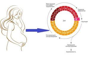 Сбой цикла месячных – причины и лечение