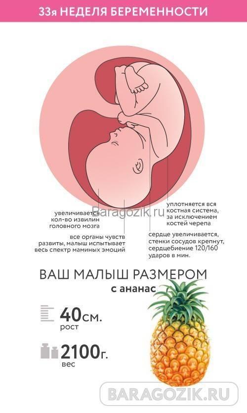 27 неделя беременности: что происходит с малышом и мамой, фото, развитие плода
