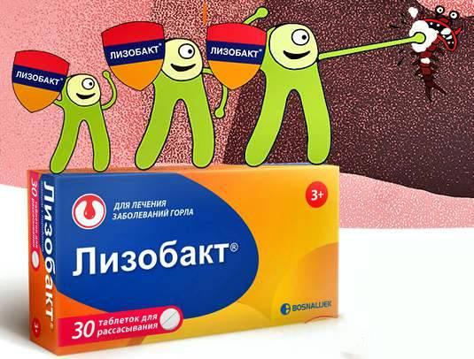 Инструкция по применению препарата лизобакт для детей, взрослых и при беременности, аналоги