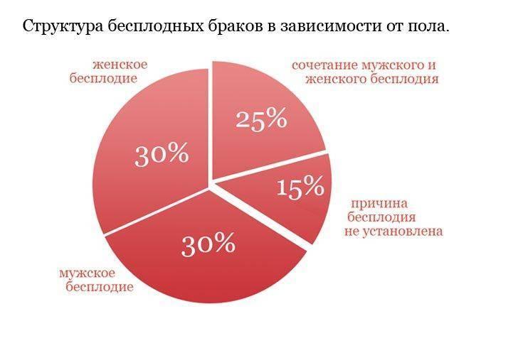 Статистика эко: процент успеха с первого раза в россии, количество протоколов, с какой попытки получилось, осложнения