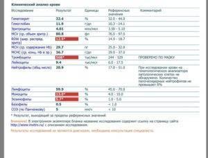 У ребенка повышены лимфоциты в крови: причины повышенных лимфоцитов