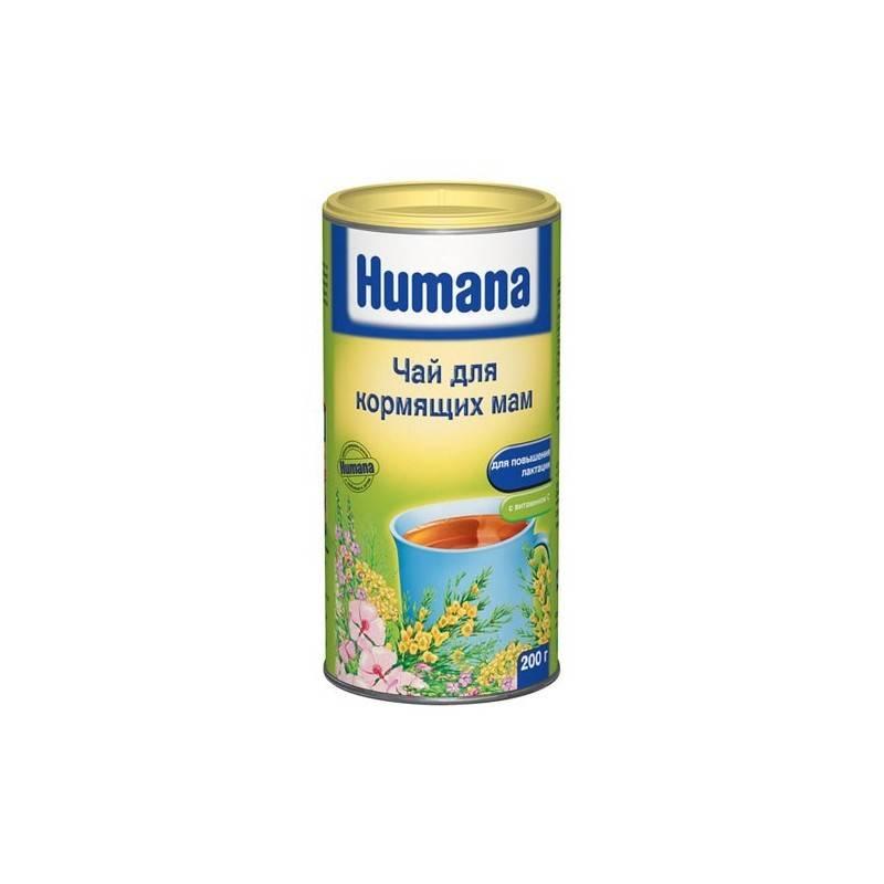 Чай для лактации: какой лучше выбрать, отзывы, какие травы можно пить для улучшения выработки грудного молока