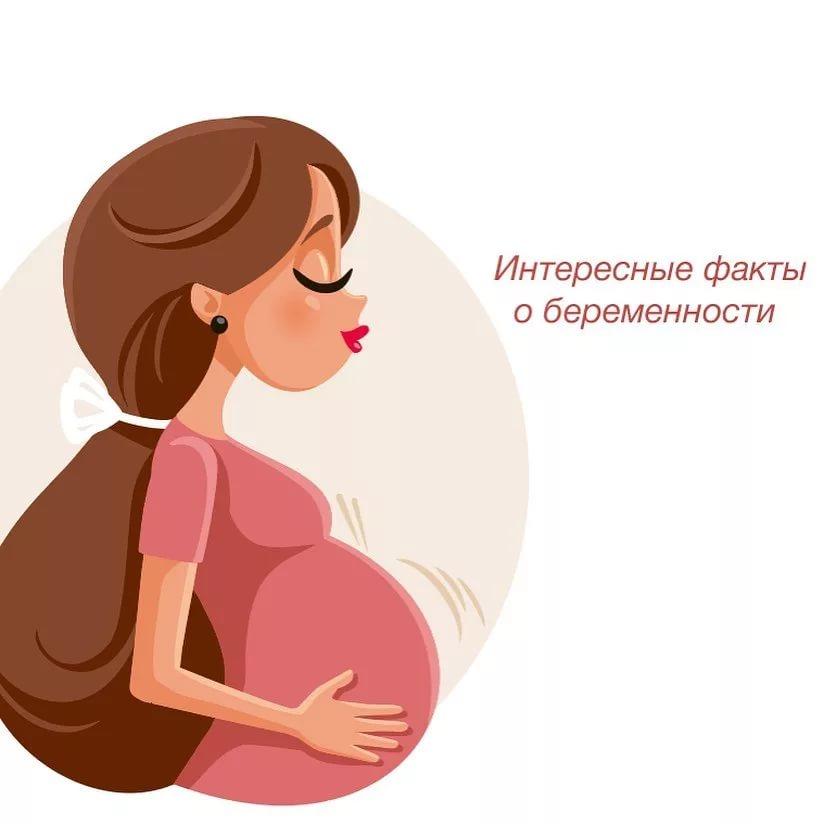 Все про беременость от а до я. это просто удивительно! любопытные факты о беременности и родах