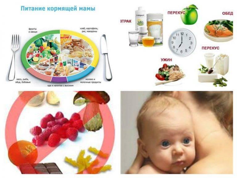 Питание кормящей мамы при грудном вскармливании