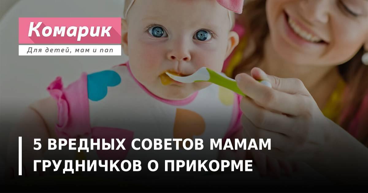 5 вредных советов мамам грудничков о прикорме