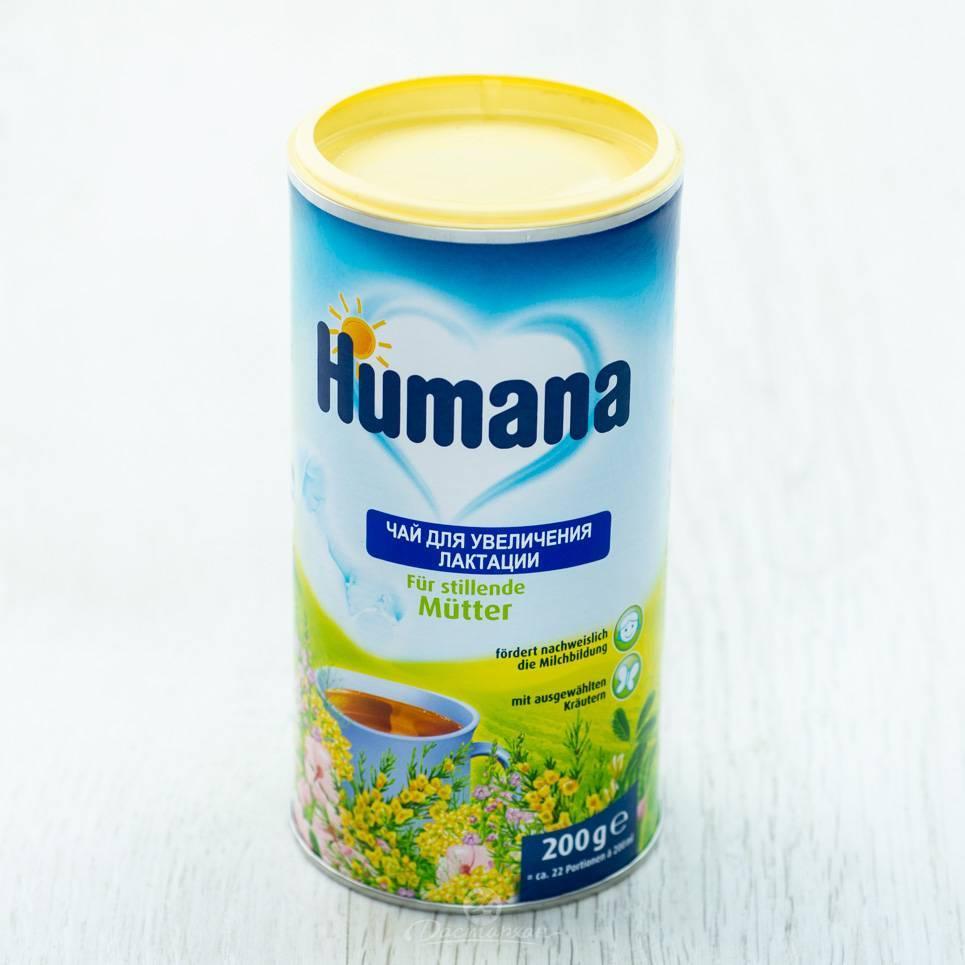 Чай для лактации: мамин помощник или ловушка маркетологов? 13 вкусных видов фиточая