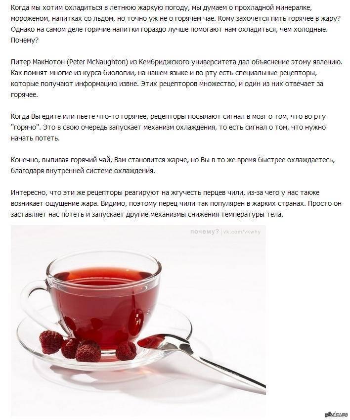 Детское чаепитие: когда икакой именно чай можно давать малышу