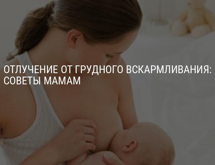 Как постепенно отучить ребенка от грудного вскармливания - всё о грудничках