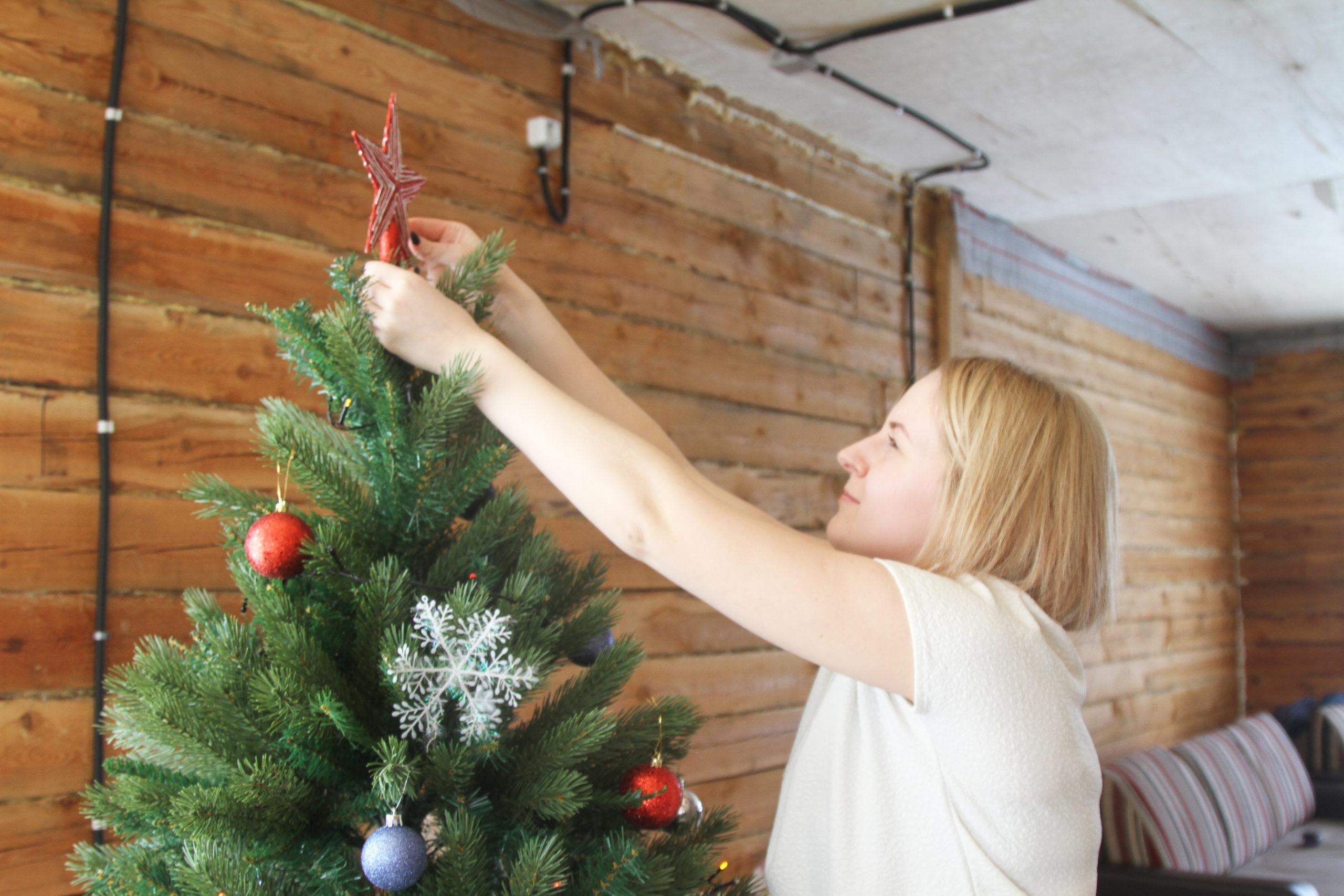 Почему нельзя сажать елки на участке: приметы, мнения экспертов, правила