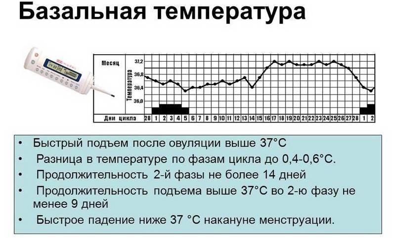 Поднимается температура перед месячными у подростка