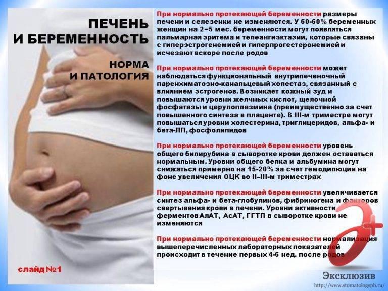 Почему болит живот у беременных? физиологические боли в животе во время беременности.