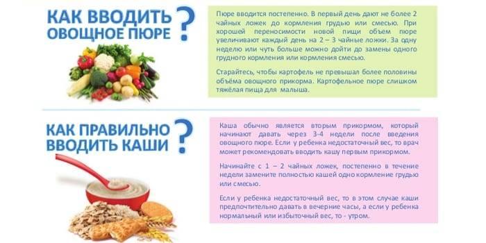 Абрикос как первый прикорм, секреты вкусного питания