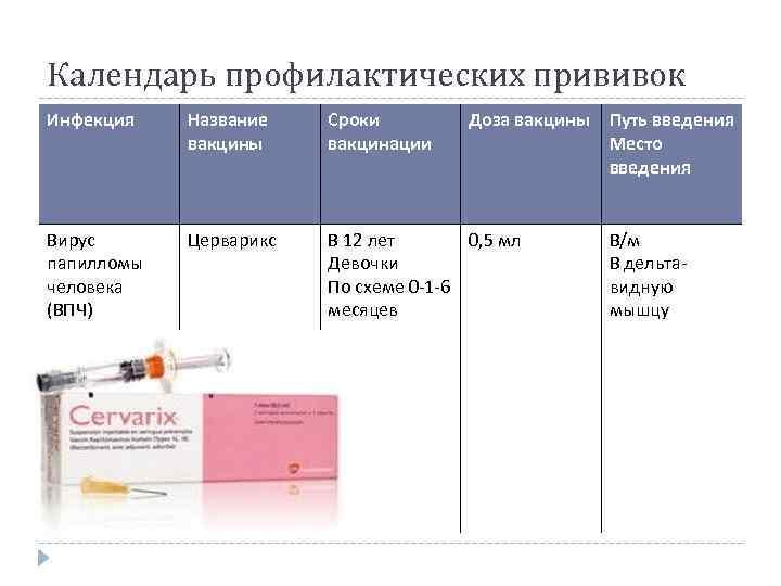 Сколько раз делают бцж: график и календарь прививок, когда делается первая прививка в жизни против туберкулеза, сколько раз ставят