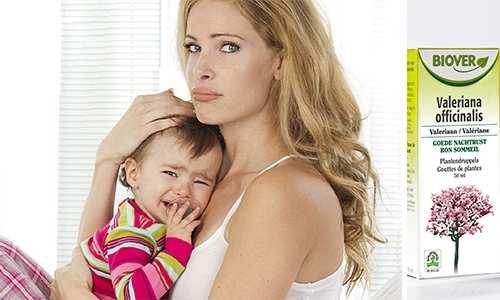 Валерьянка кормящим мамам