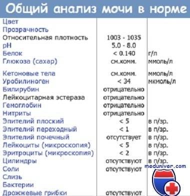Лейкоцитарная эстераза следы в моче у ребенка что это. horoshayaberemennost.ru