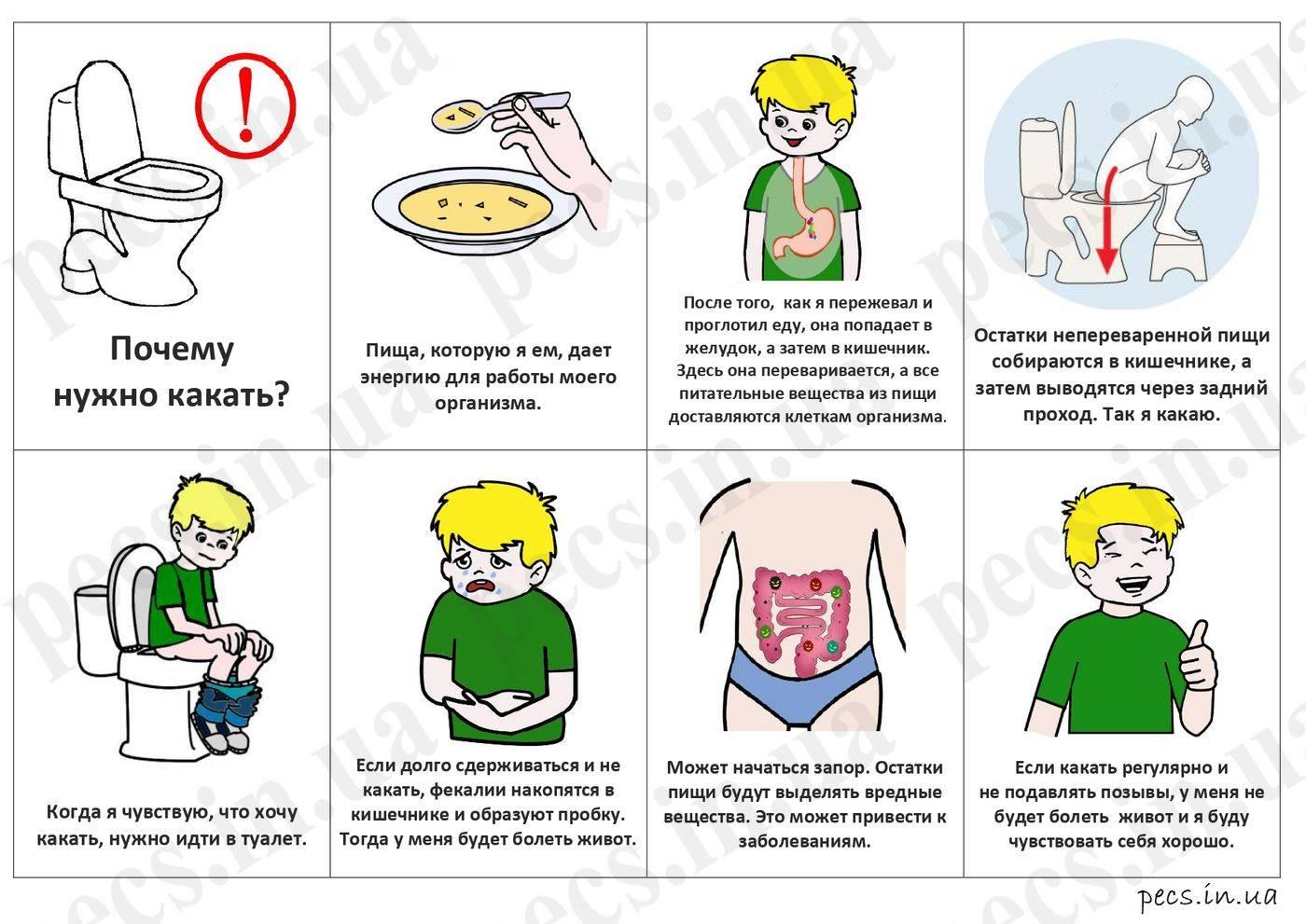 Как научить ребенка вытирать попу. обсуждение на liveinternet