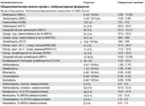Лимфоциты в крови: норма, повышены, понижены, причины отклонений
