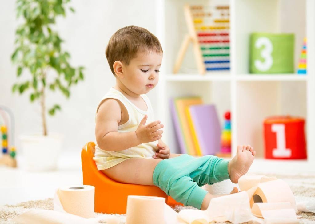 Как отучить ребенка от памперсов и приучить к горшку. приучение к горшку
