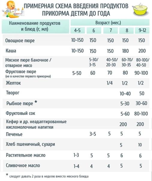 Чем кормить 6-месячного ребенка на искусственном вскармливании: рацион питания и примерное меню
