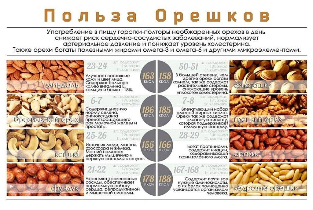 Можно ли есть орехи при беременности? чем полезны? какие - грецкие, кедровые, мускатные можно есть?