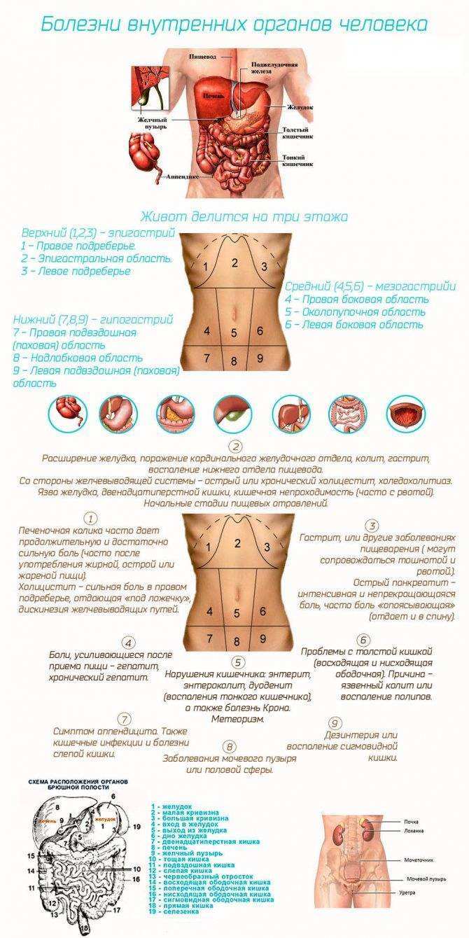 Как может болеть кишечник при беременности