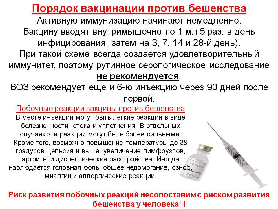 Прививка от дифтерии: график вакцинации, реакция и противопоказания