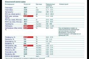 Норма лимфоцитов в крови у ребенка